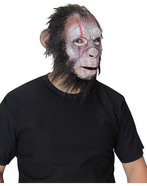 Maschera di scimpanzé guerriero per adulto