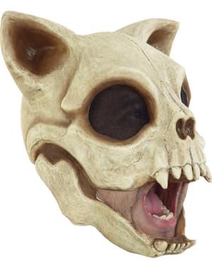Yetişkinler İçin Cat Cranium Mask