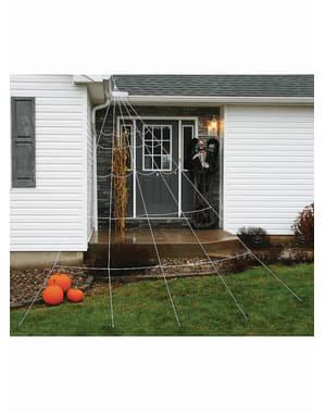 Spindelnät gigantiskt för taket