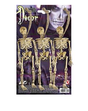 3 squelettes Halloween suspendus (15 cm)