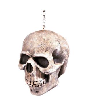 Crâne suspendu avec chaîne