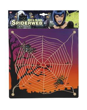 Selvlysende spindelvæv med edderkopper