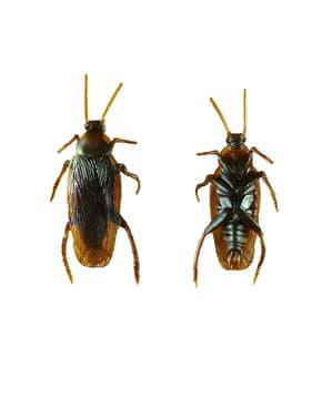 Cucaracha asesina