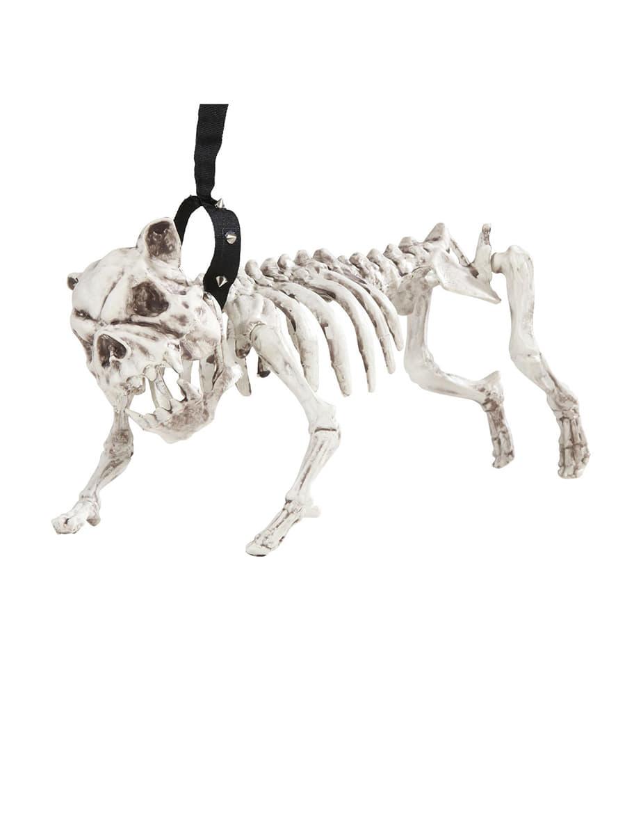 squelette de chien avec laisse pour f tes et anniversaires funidelia. Black Bedroom Furniture Sets. Home Design Ideas