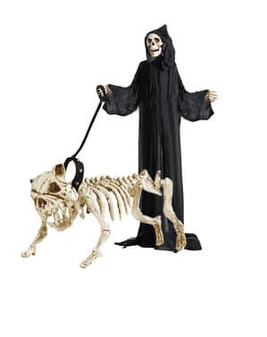Hunde-Skelett mit Leine