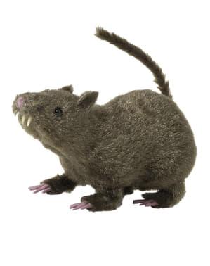 Rata peluda marrón