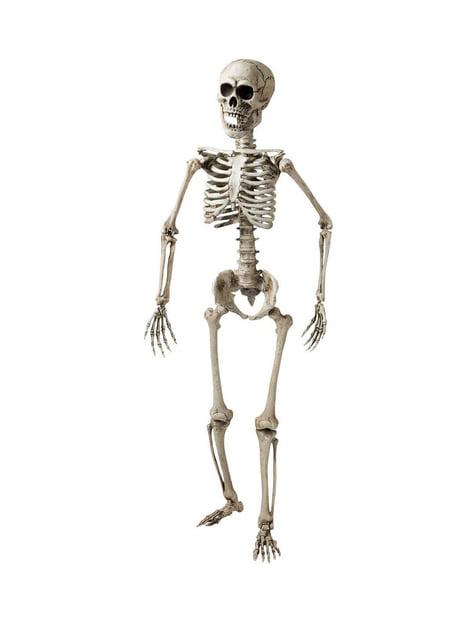 Csuklós csontváz (160 cm)
