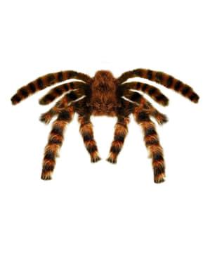 Tarantulă de 65 cm.