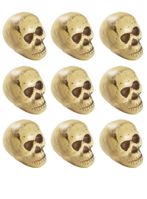 9 têtes de morts Halloween