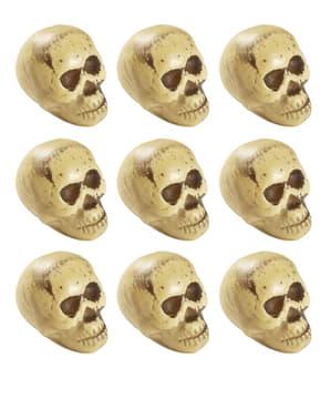 Sett med 9 hodeskaller