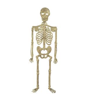 Esqueleto pingente de 32 cm.