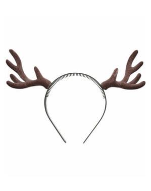 Lapland reindeer horns
