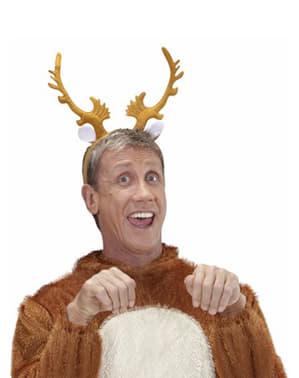Rendiergewei Rudolph