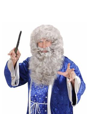 Peluca y maxi barba gris Melchor