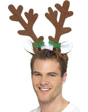 Lønn Jule Horn