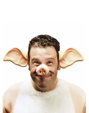 Uszy świni