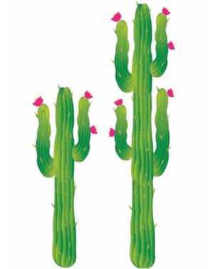 Cactus decorativo
