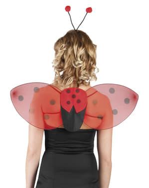 Kit asas e Bandolete de joaninha para mulher