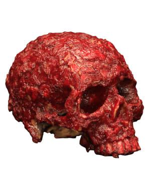 Roestende schedel gemaakt van hars