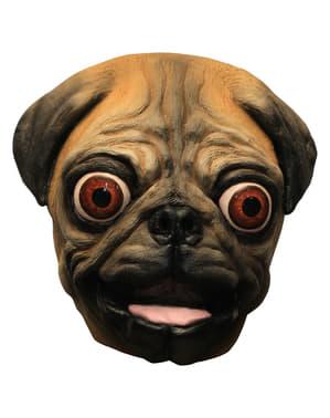 Máscara de cão Carlino em látex