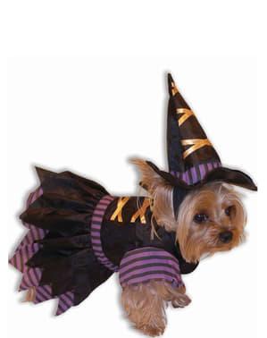 Déguisement sorcière chien