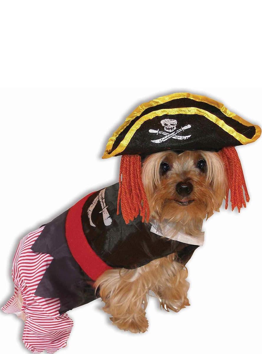 Costume da pirata per animale domestico i pi divertenti - Animale domestico da colorare pagine gratis ...