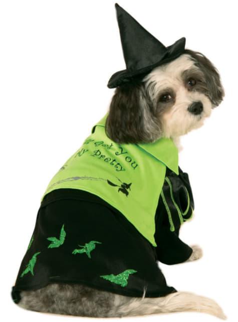Fato da bruxa do Oeste do Feiticeiro de Oz para cão