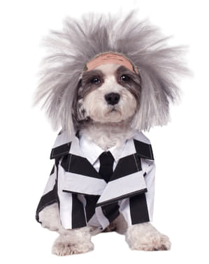 Dogs Beetlejuice costume