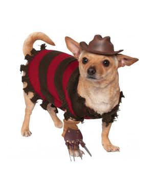 Fato de Freddy Krueger para cão