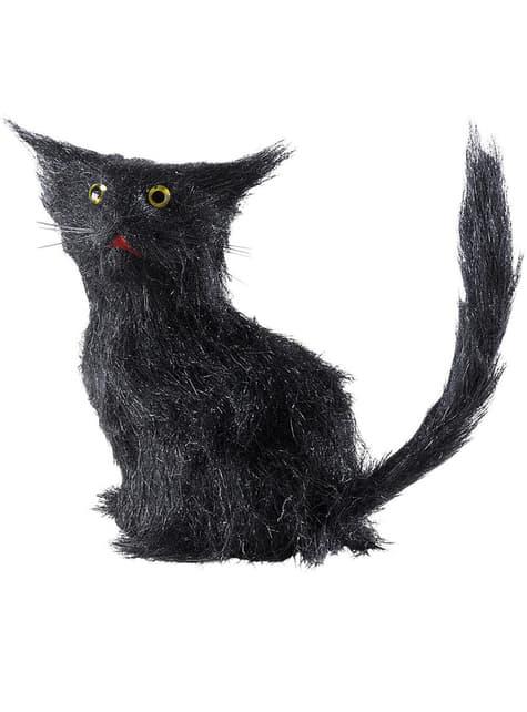 Czarne koty przynoszące pecha