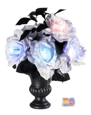 Bunt leuchtende Vase mit 6 weißen Rosen