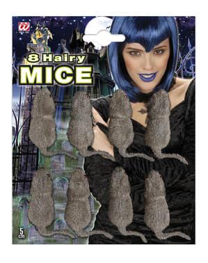 Apró játék egerek