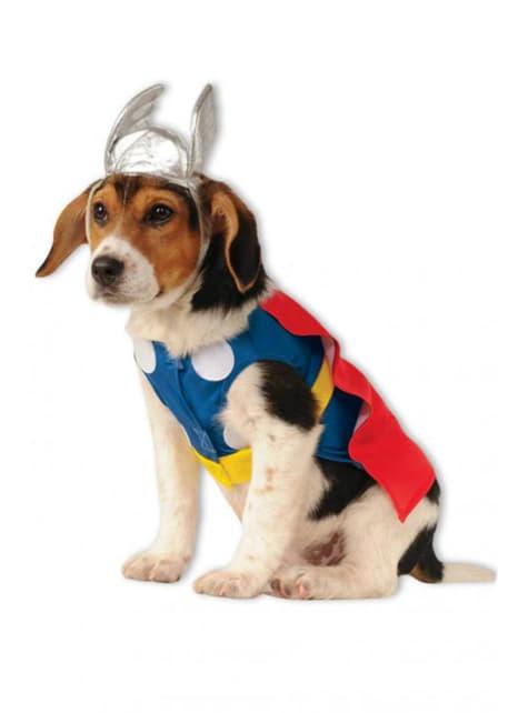 Dogs Thor Costume