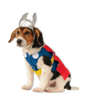 Déguisement Thor chien