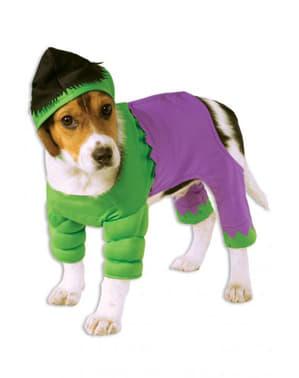 Kostým pro psa Hulk