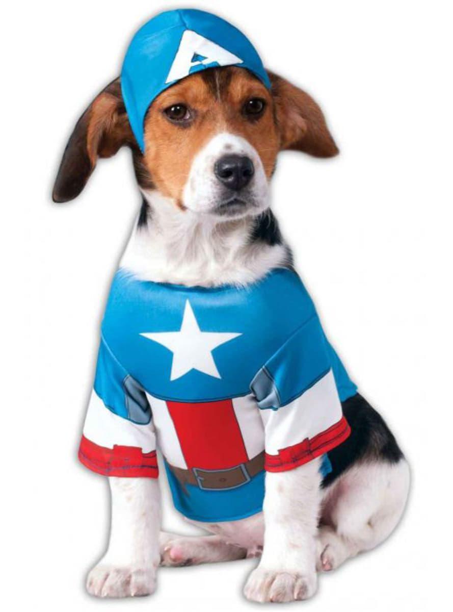 Good Morning America Dog Costume Video
