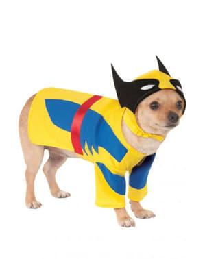Fato de Wolverine para cão