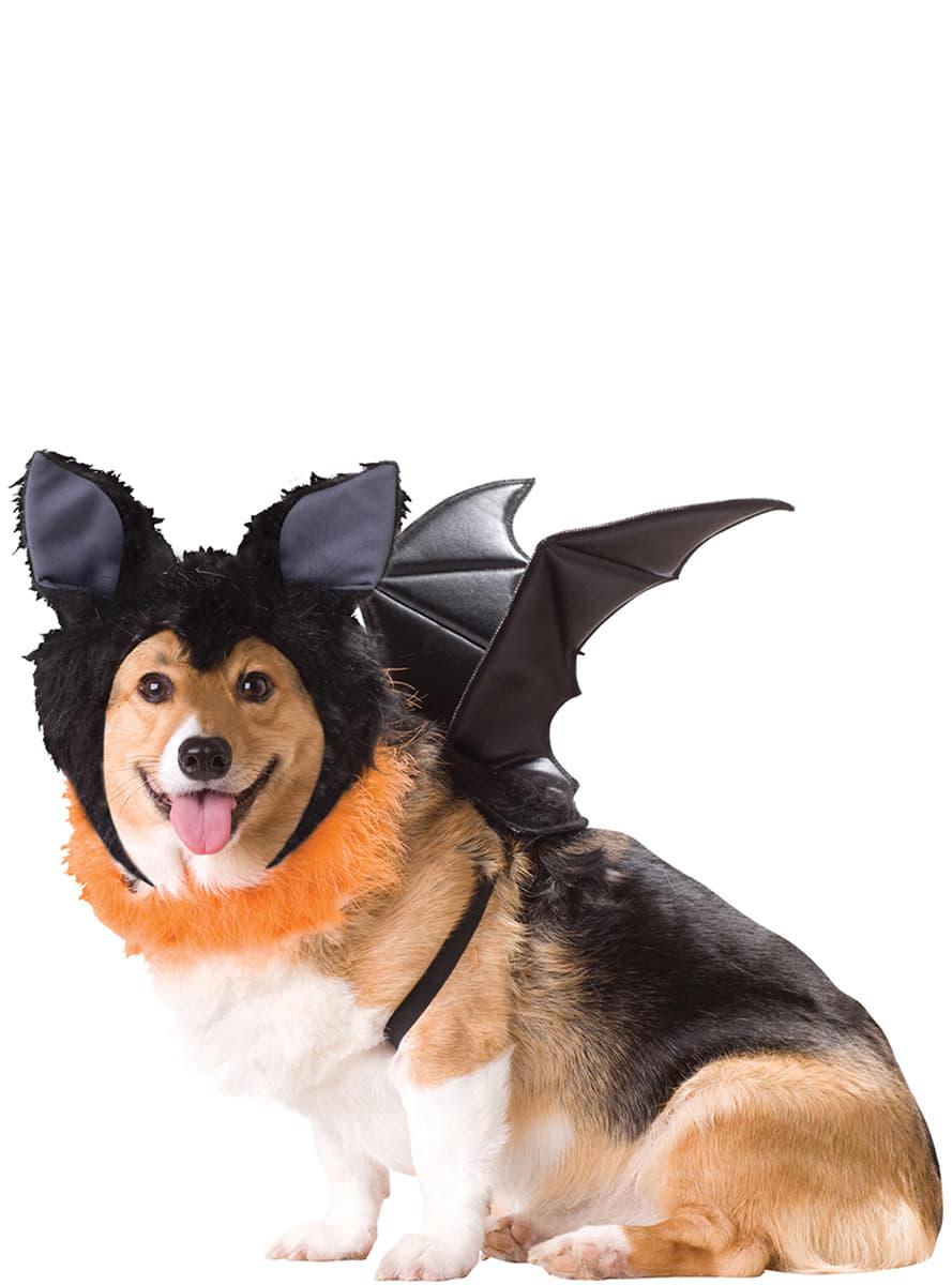 D guisement chauve souris de nuit pour chien funidelia - Deguisement halloween chien ...