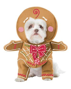 Strój imbirowe ciasteczko dla psa