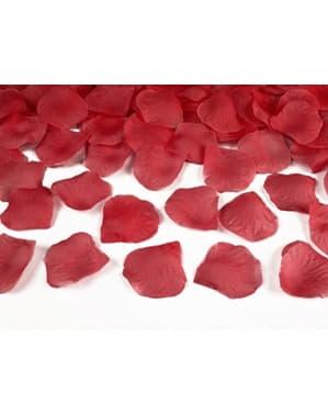500 pétales de roses rouges