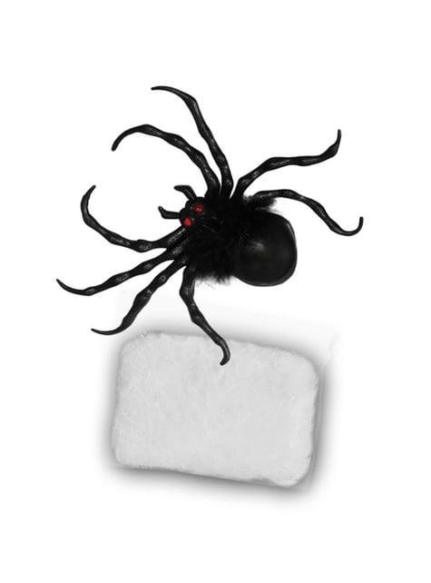 Conjunto de aranha com teia de aranha