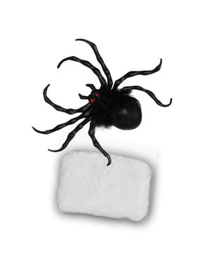 Set Spinne mit Spinnennetz