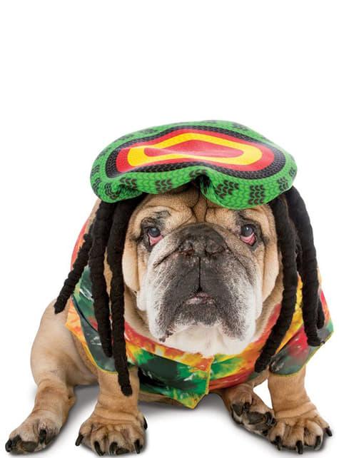 Disfraz de rastafari para perro