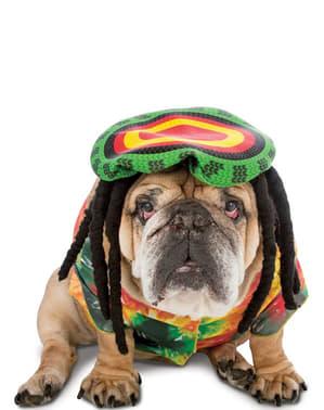 Anjing Rastafarian Kostum
