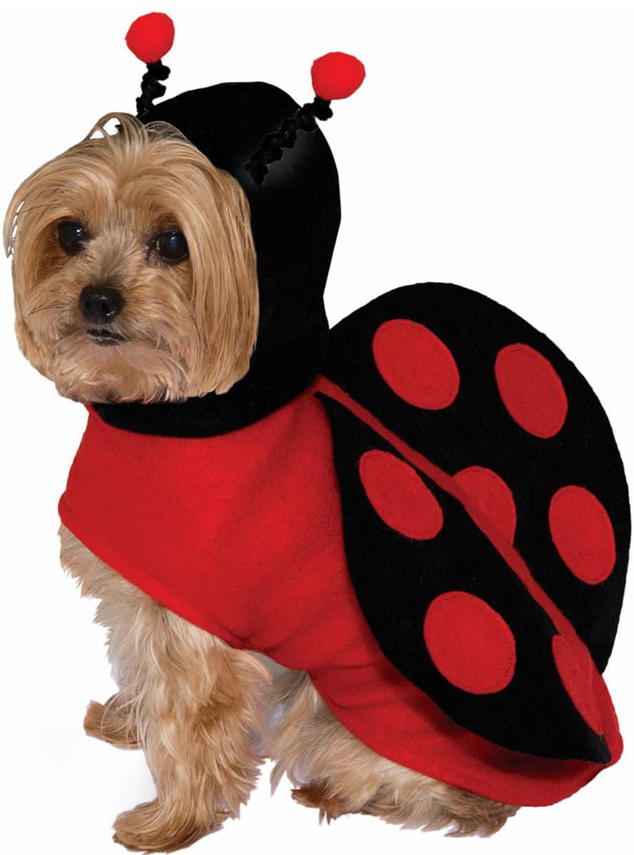 Disfraz De Mariquita Para Perro Comprar Online En Funidelia