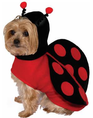 Disfraz de mariquita para perro