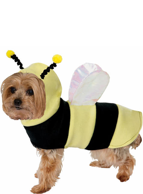 Bij kostuum voor honden