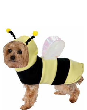 Fato de abelha para cão