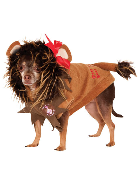 Bange leeuw Tovenaar Oz Kostuum voor honden