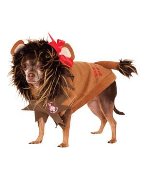 Fato de Leão Cobarde do Feiticeiro de Oz para cão